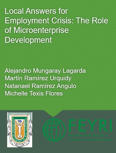Local Answers for Employment Crisis The Role of Microenterprise Development