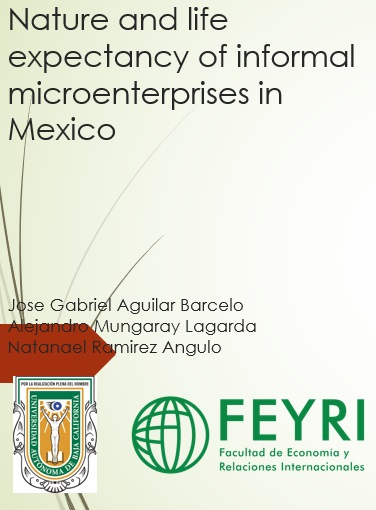 Nature and life expectancy of informal microenterprises in Mexico